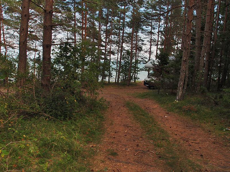 Unser erster Freistehplatz im Norden von Saaremaa...